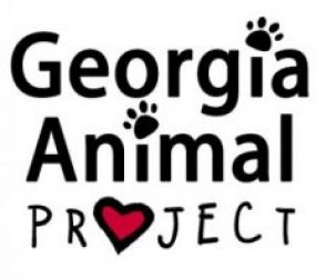 Georgia Animal Project